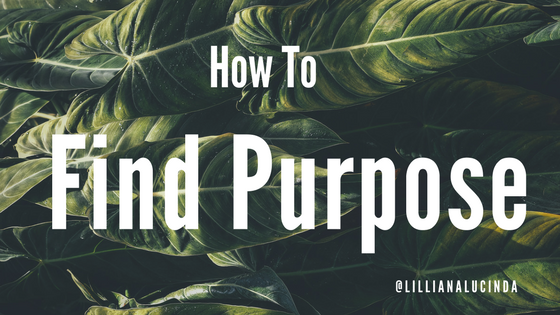 How to Find Purpose @plantspluslife